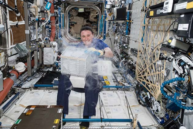 Astronaut, Auñón-Chancellor, working with plant samples aboard the ISS. (Source: NASA)