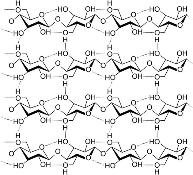 Cellulose is a complex of hydrocarbons with extensive cross-linking for resilience and strength. (Source: Laghi.l/Wikimedia Commons)