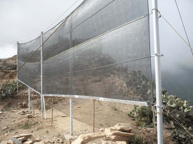 'CloudFisher' nets enable the production of potable water from fog. (Source: WasserStiftung Waterfoundation)