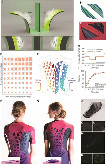 Performance of sandwich-structured biohybrid film for making sweat-responsive wearables. (A) Shape transformation of a flat sandwich-structured biohybrid film when exposed to moisture. (B and C) Stress simulation (B) and experimental bending behavior (C) of a ventilating flap at the open stage when exposed to skin with high humidity. (D) Garment design principle considering both the amount of sweat and body temperature gradient during exercise (note S4). (E) Design of a female garment prototype based on heat maps (left, unit size) and sweat maps (right, percentage of opened area) of the back (note S5). (F and G) Images of garment prototype before exercise with flat ventilation flaps (F) and after exercise with curved ventilation flaps (G). (H and I) Temperature (H) or RH (I) profiles of stagnant air layer near volunteer skin when she wears the female garment with either functional flaps (blue) or nonfunctional flaps (orange). (J to L) The image of the shoe under transmitted light (J) and the flap on the sole at low (K) or high humidity (L). (M to O) The image of the shoe under fluorescence light (M) and the flap on the sole at low (N) or high humidity (O).