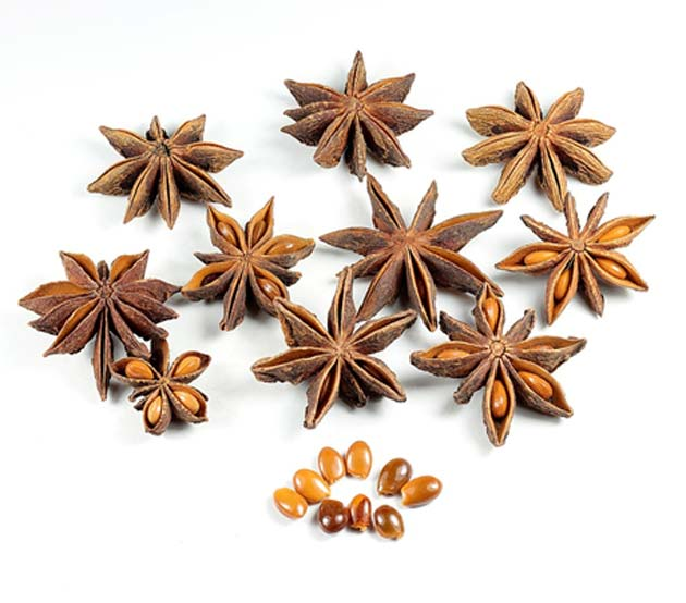 Shikimic acid has also been sourced from Chinese star anise in the past. (Source: Wikimedia Commons)