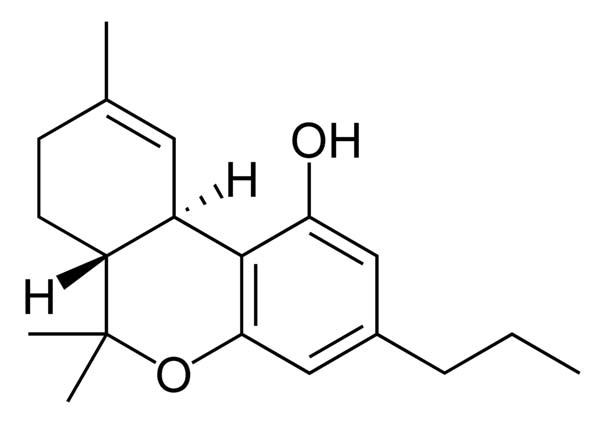 The chemical structure of THC, a phytocannabinoid. (Source: Wikimedia Commons)