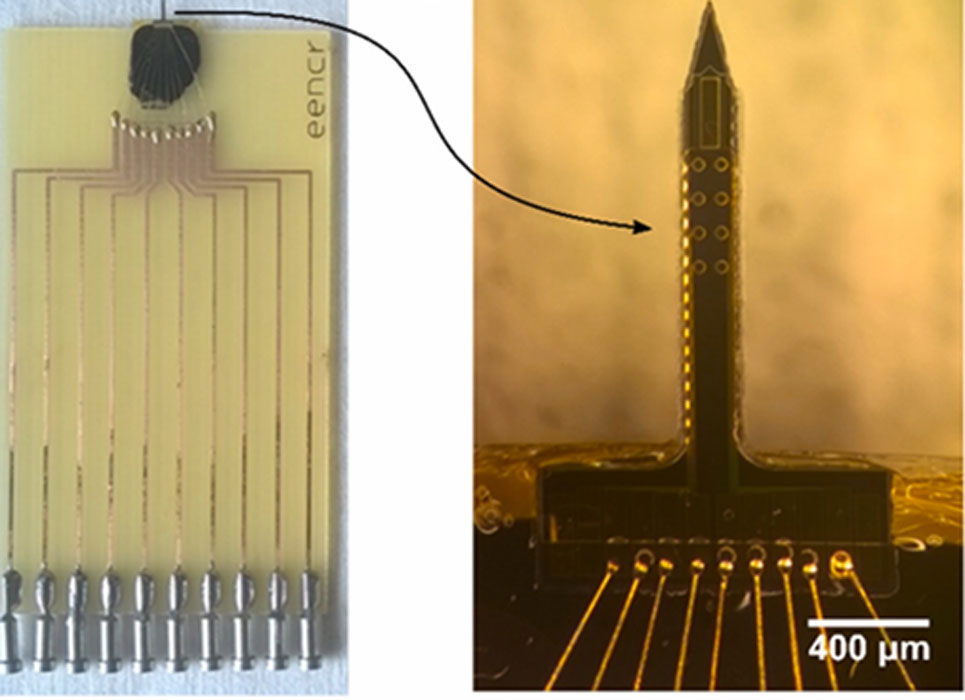 The sensor is made of a needle, which leads to 8 electrodes which give the DPV readings needed to assess IL-6 binding. (Source: C. Russell et al, 2019, Biosensors and Bioelectronics)