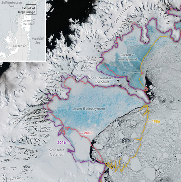 Two large sections of the ice shelf (Larsen A and B) have collapsed within the past three decades. Source: NASA