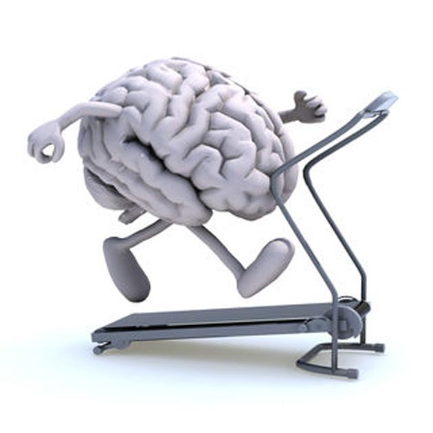 Studies have proven that the human brain is innately attracted to sedentary behaviors. (Source: Fabio Berti/Shutterstock)