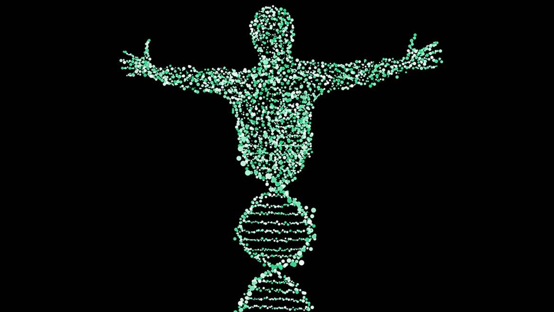 Gene Editing for Heart Disease?