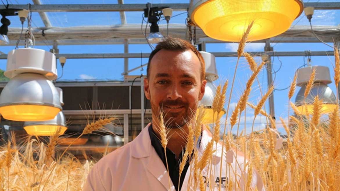 Speed Breeding: Could This Be Our Answer To Food Insecurity And Overpopulation?