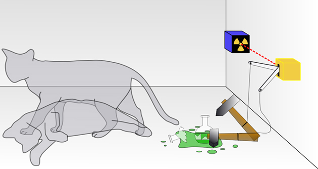Researchers develop a mechanical version of the paradox, Schrodinger's cat. (Source: Wikipedia)
