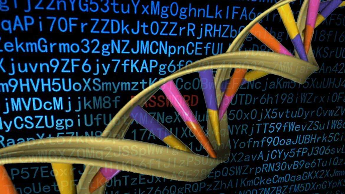 Hacking A Computer With DNA?