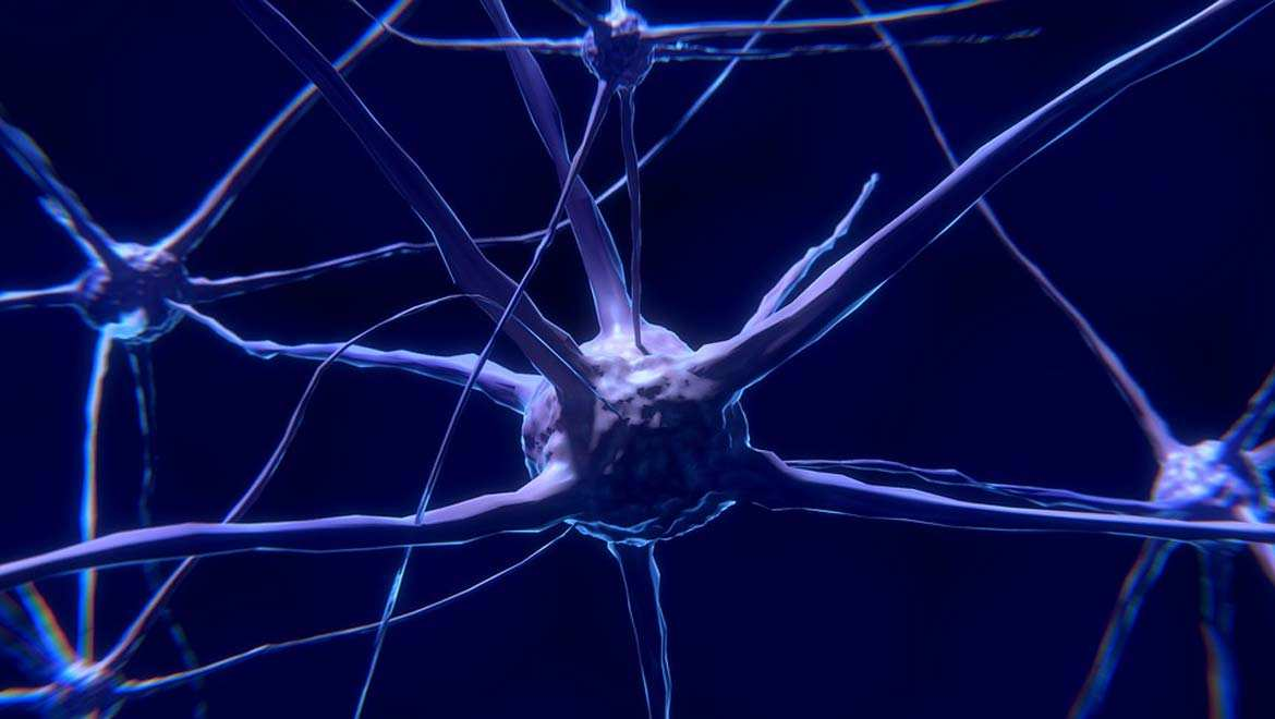 New Findings in Motor Neurone Disease Research Outlines Abnormalities in Important Nerve Cells