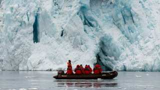 How To Stop Ice? New Research Re-imagines Anti-Freeze In Nature