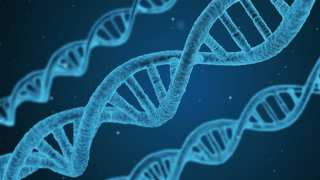 ExPecto: New AI Predicts Biological Roles Of Genetic Variations