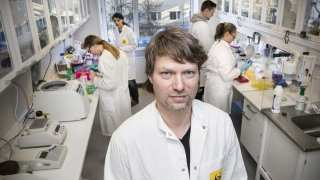 Antibody That Can Prevent Allergic Reactions Identified