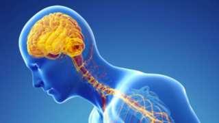 Breakthrough Research Suggests Parkinson's is An Autoimmune Disease