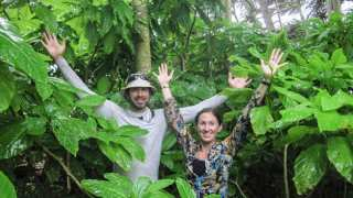Removing Non-Native Species from Palmyra Atoll