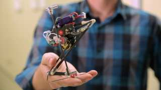 Meet Salto: The Most Vertically Agile, Wall-Jumping Robot