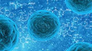 New Technique Brings Adult Stem Cell Technology Closer to the Everyday Clinic