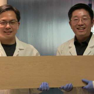 New Chemical Process Makes Wood as Strong as Steel